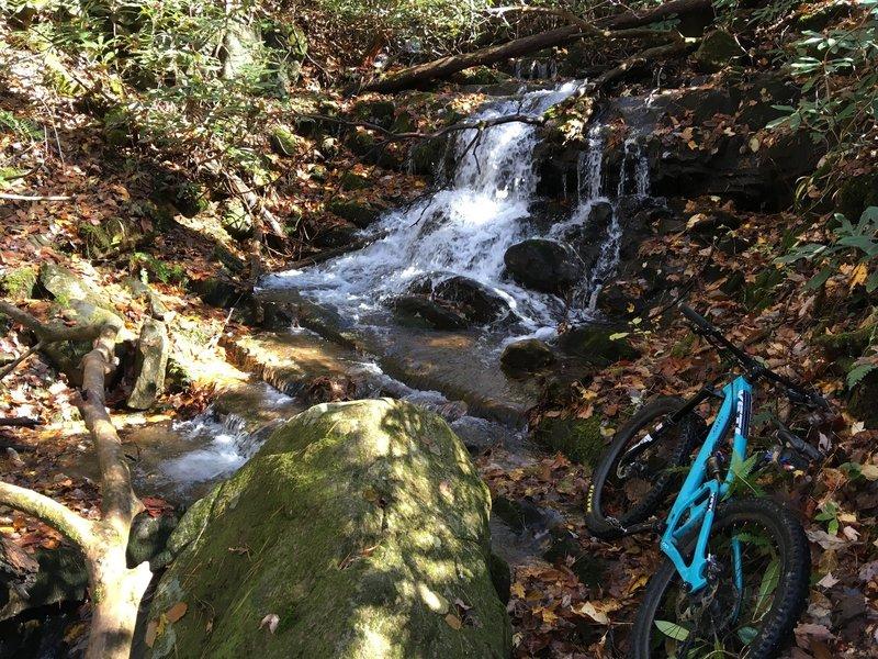 Small falls in Davis Creek.