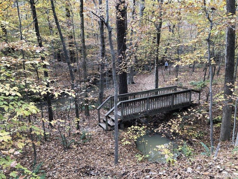 Trailside on Reedy Creek is a nice little walking area down the slope.