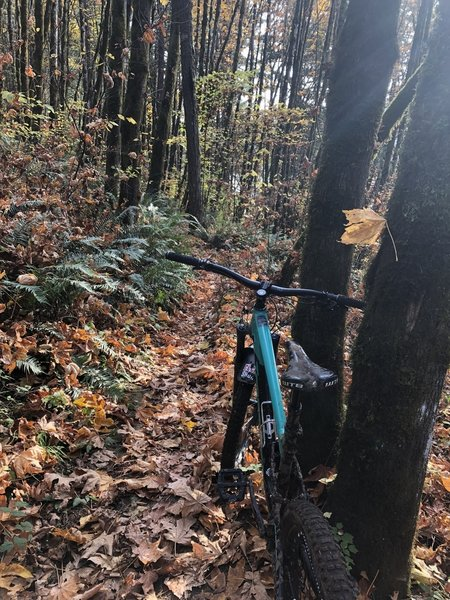 Awesome looking trails in the late fall!