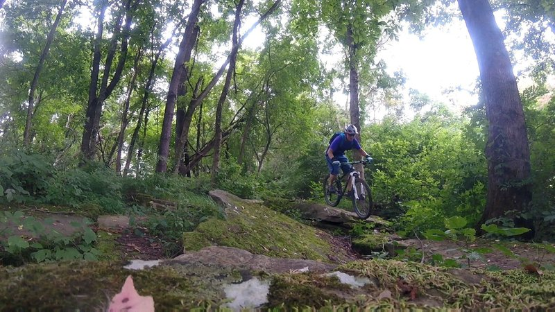 Rarely ridden trail section.