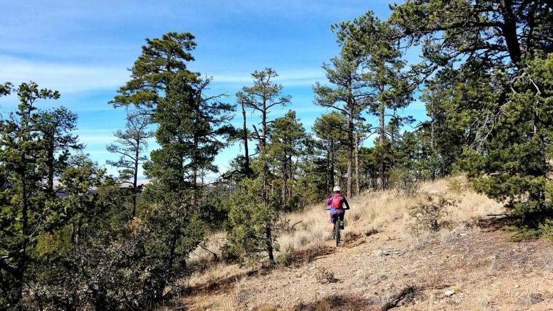 Fun Singletrack - keep your eyes peeled for trail markers
