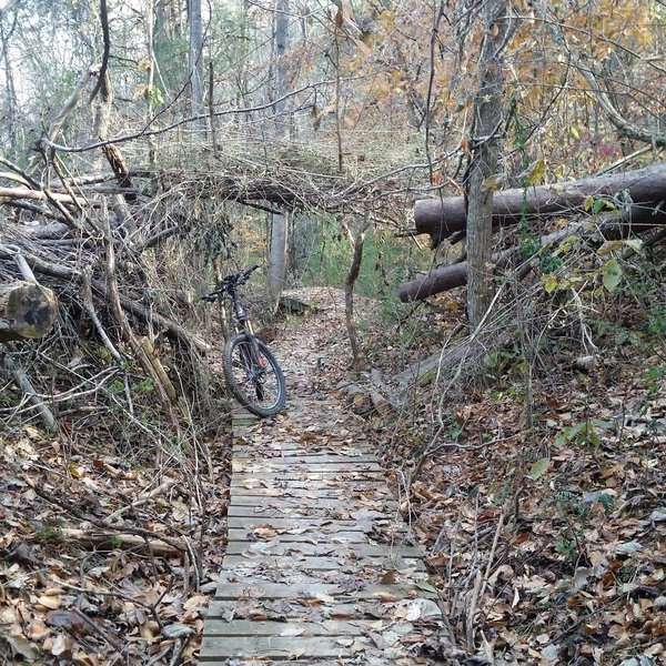 Elevated trail is quite common on trails around the Knoxville Urban Wilderness.