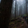 Get after this climb on a foggy morning. You won't regret it. Best climb in the area.