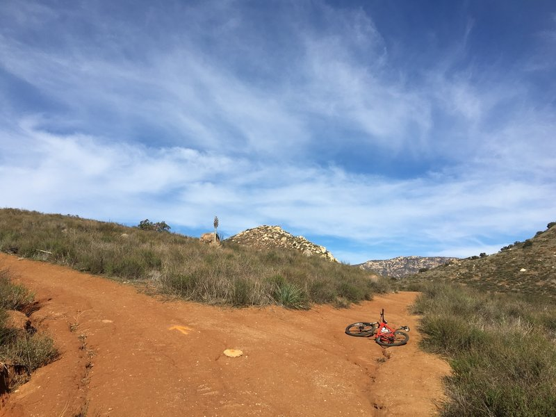 Stay to the right for Hollenbeck Canyon singletrack!  (Go up and left for the Fire Road.)