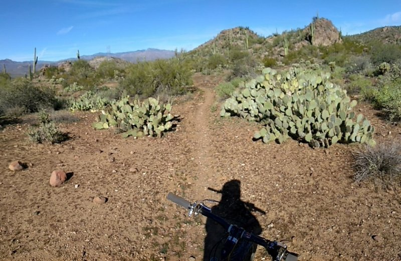 Looking north towards the general area of the Table Mesa trailhead