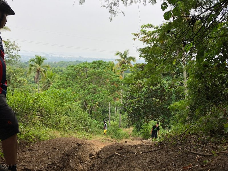 Steepest portion of the track where only the daredevils ride. With roots, ruts, and loose soil on dry season. Never attempted to ride here on wet conditions. :)