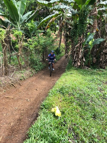 Wider track for beginner trail-riders at RP Trail.
