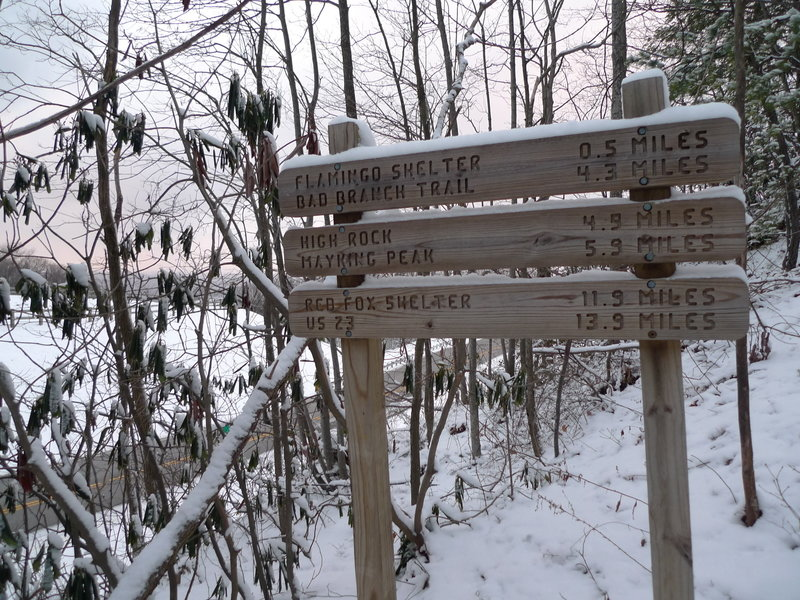 Pine Mountain Trail at US119