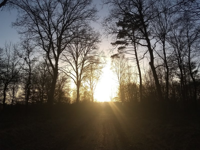Sunset in the winter. The trail runs straight towards the sun and then turns right.