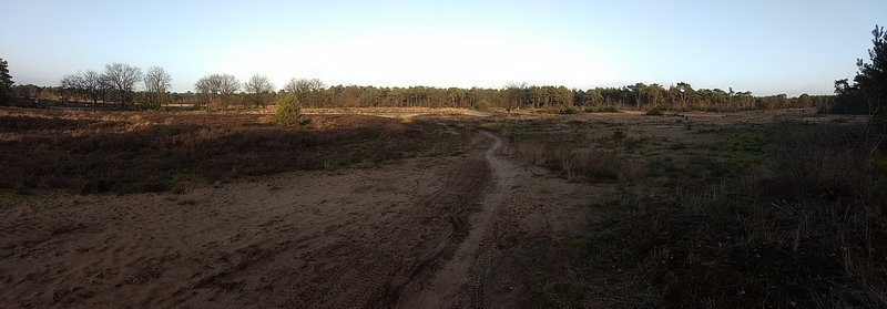 The Groote Heide trail runs through the moorland. The picture was taken in the winter, close to sunset.