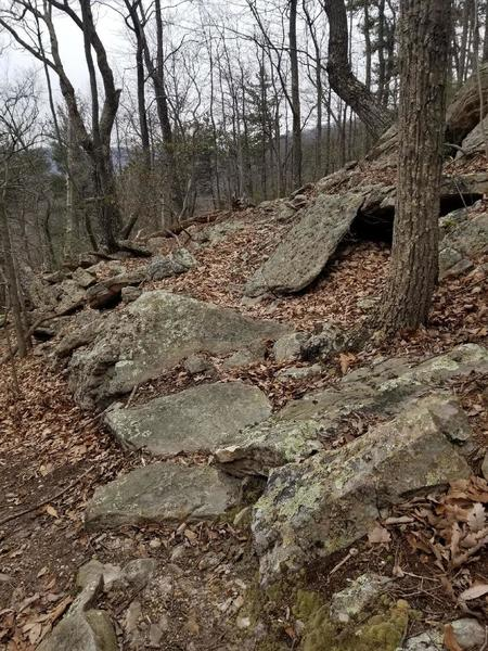 One of the many rock gardens on the trail, this is on the reverse descent.