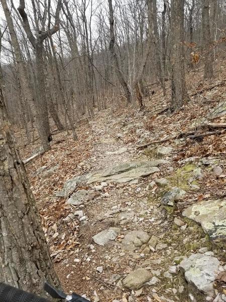 More rock garden singletrack on Buck Cutoff descent.
