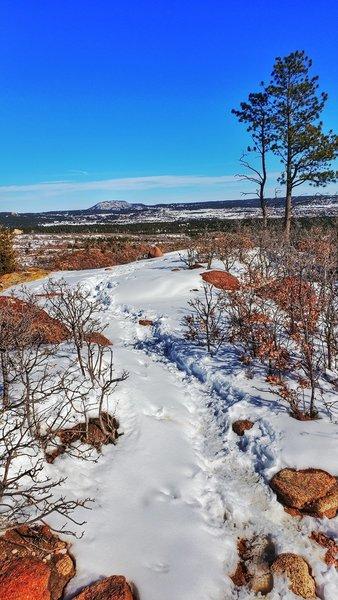 Ridge Trail.