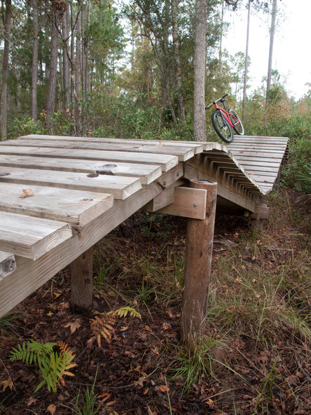 Nocatee Preserve Roller Coaster Feature