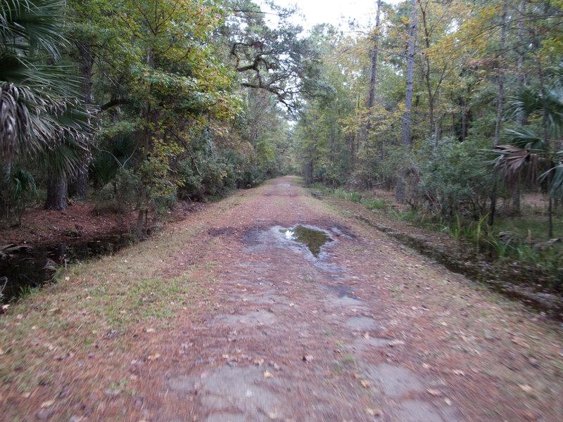 Nocatee Preserve Access Road