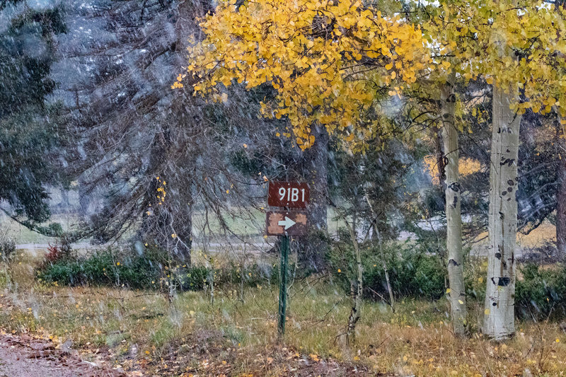91B1 is marked with these signs