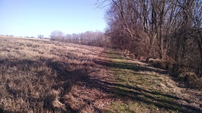 Another mowed trail that is a shortcut to get you back to the Parking Area.