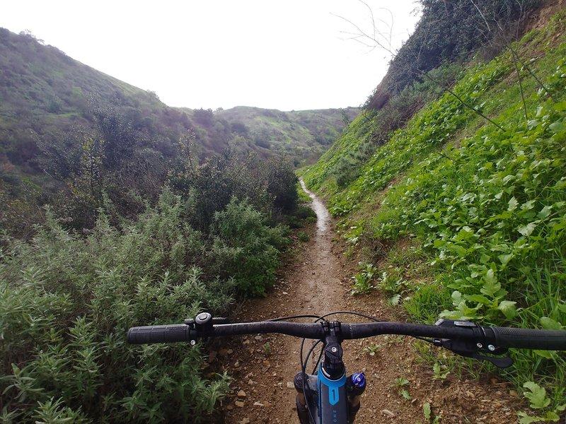 Trails turn greasy in the rainy season