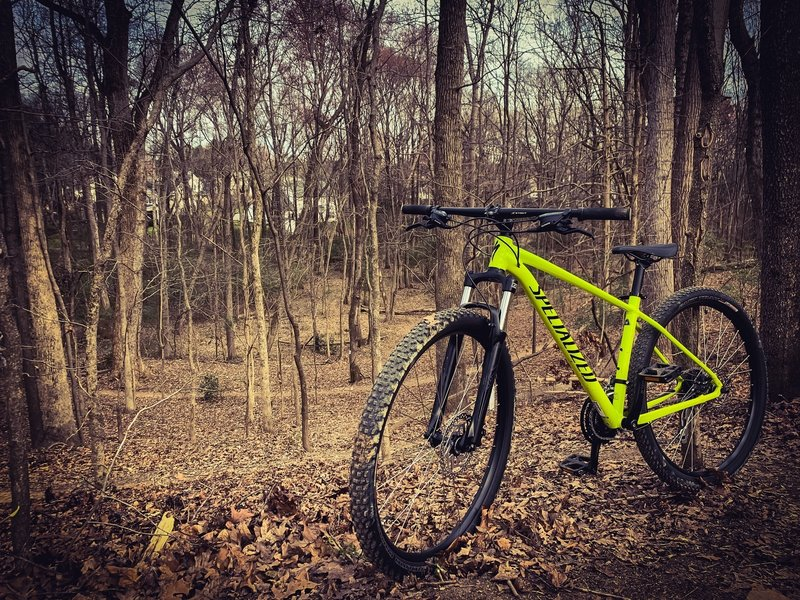 Shredding the trails on the new hardtail