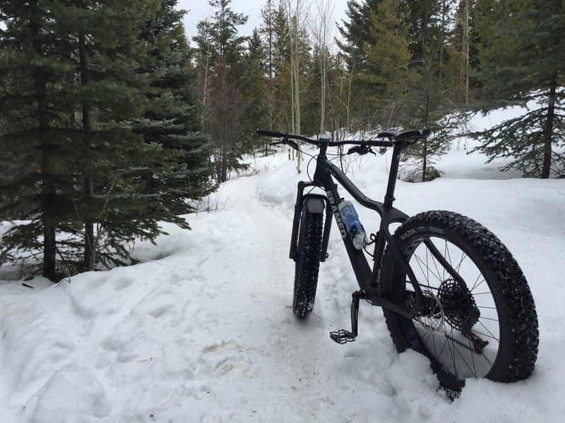 Great Fat biking spot. Trail faces north so it won't melt as fast.