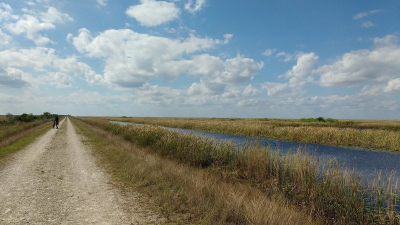 Looking west down the Everglades Conservation Levee Greenway.