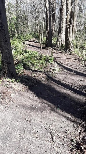 Typical trail example