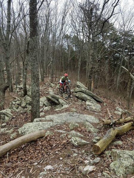 Shredding the rocks