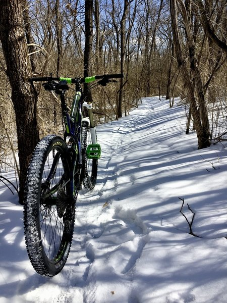 Snowy Ride!