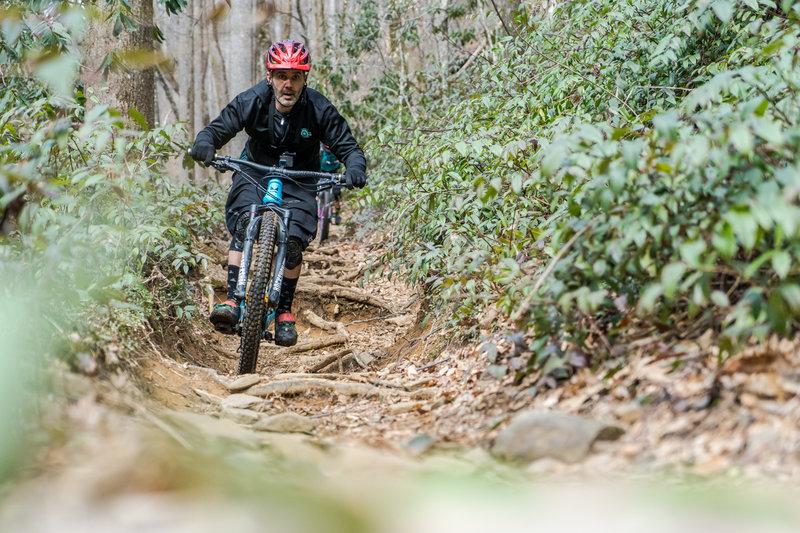 Haulin' down the rootiest root section of Daniel Ridge