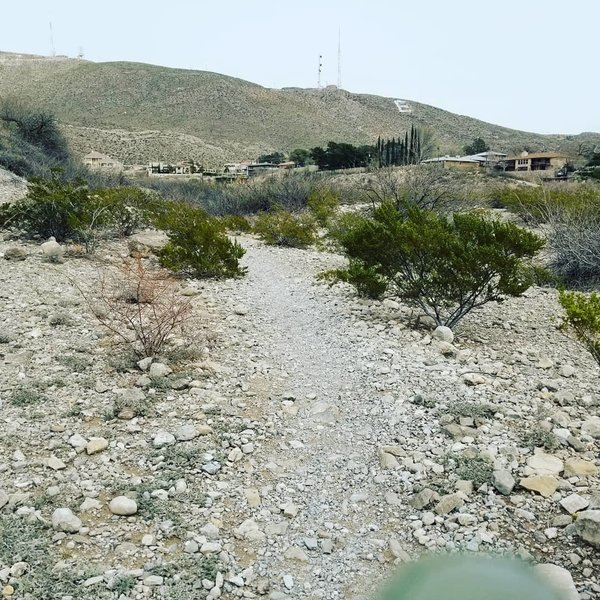 Arroyo Park trail