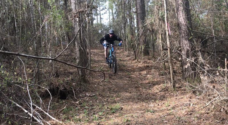 Descending hill on Zephyr Trail.