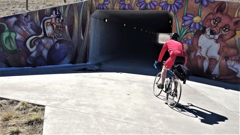 Painted underpass on Big Dry Creek Trail.