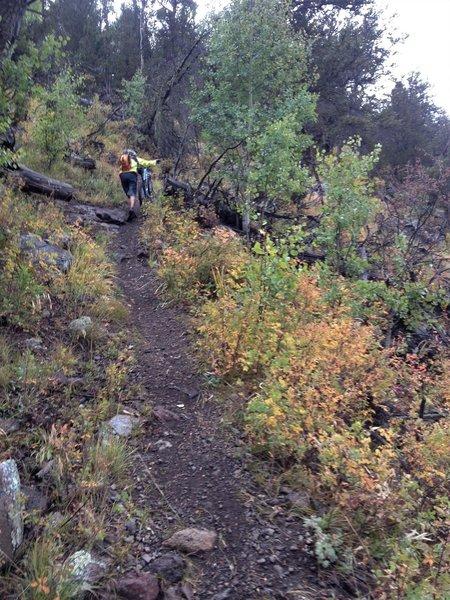Uphill push