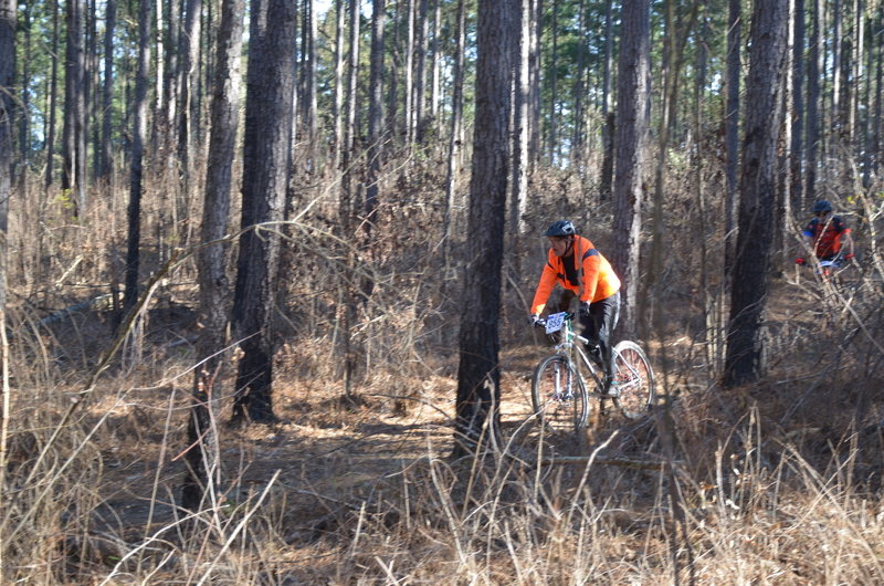 racing through the woods at Mount Zion