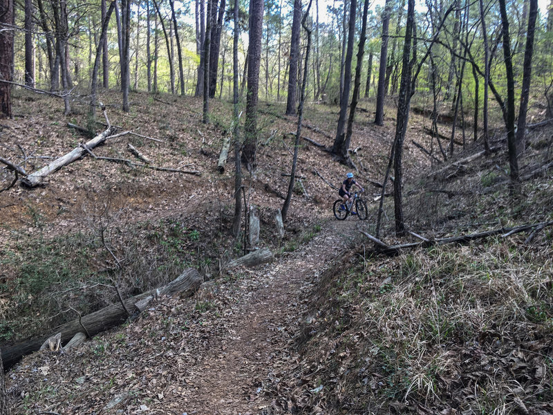 The hilly section of Steep Ravine Trail winds nicely. This is slightly wider than most of it, but a good example of how it is. Not a technical trail.