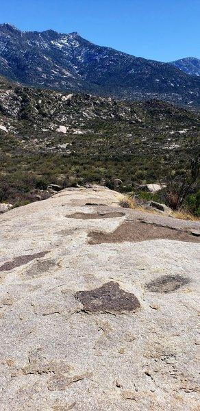One of a few Slickrock sections of Cowboy Slickrock trail