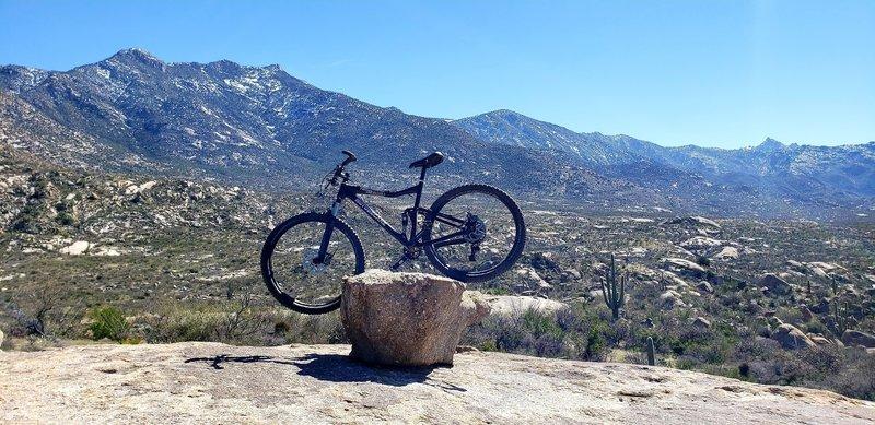 On one of slick rocks on the Cowboy Slickrock trail