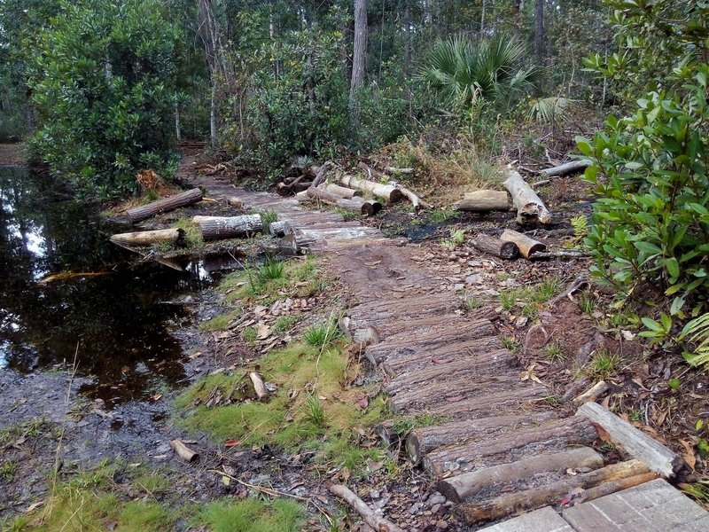 Log bridge on Pine Needle Punch.