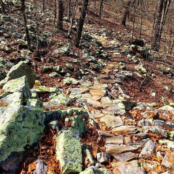 An example of one of the many rock gardens on Blowout Mountain