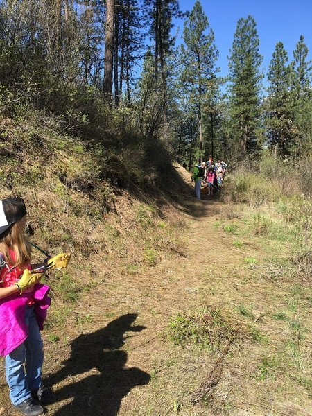 The Garden Valley Wolverines on Wheels youth MTB club clearing the new Teacher's Pet Trail.