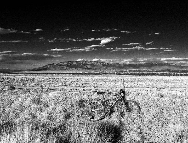 View from Paseo De La Mesa Trail