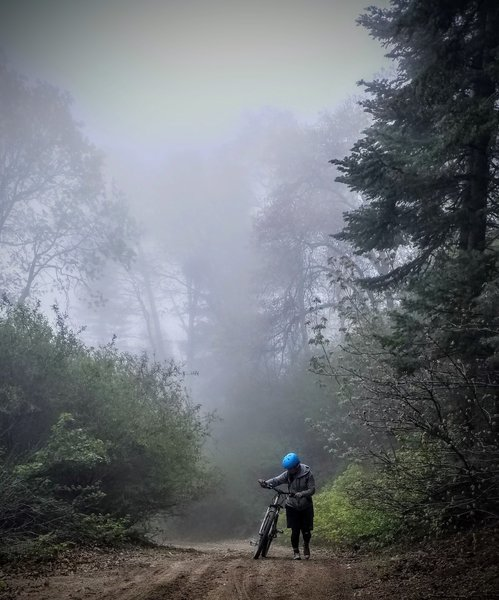 Hiking it near the top of Sugarpine Mountain in the cloud coverage