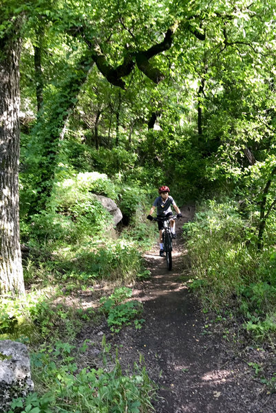 Squires trail...headin out to Hurst Hollow