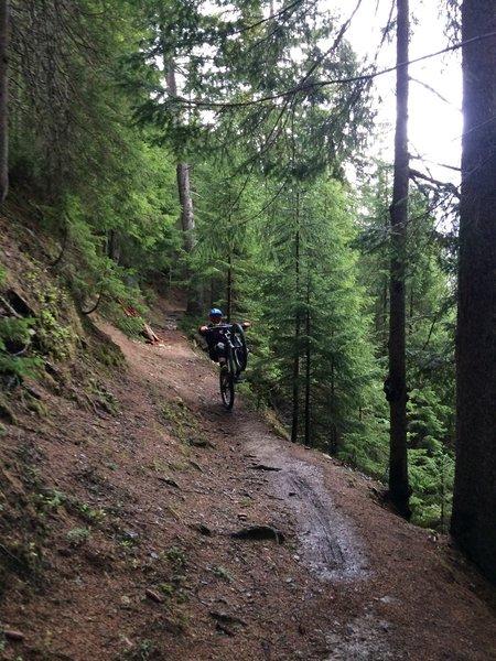 Floria trail