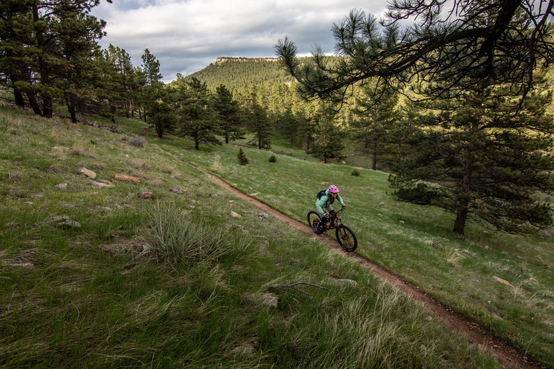 Overland Loop laps at sunset