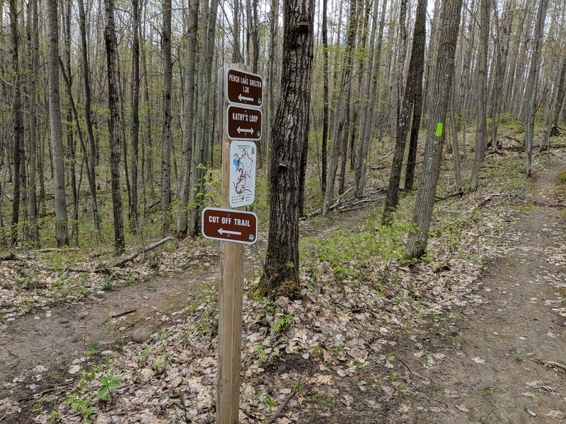 Trail signage at intersection of Cut Off and Kathy's Loop.