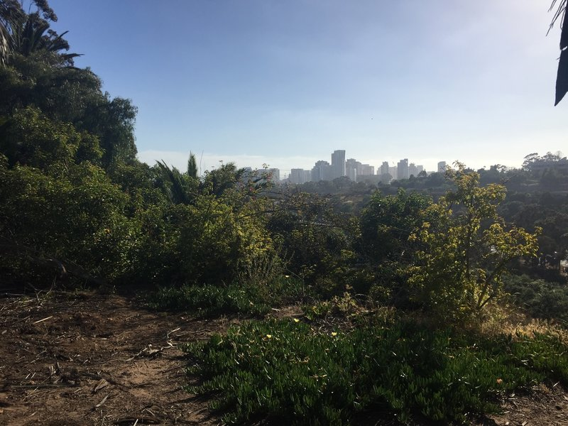 Late afternoon view of downtown San Diego from Golden Hill Park, looking southwest.