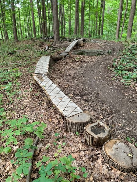 fun obstacle to navigate