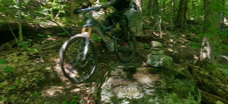 Rock drop back onto trail