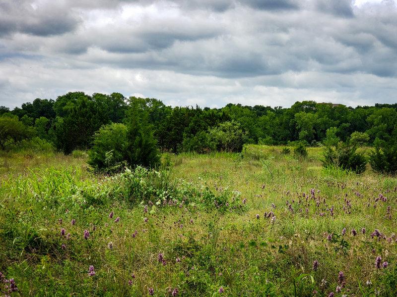 Tennessee Valley Prairie